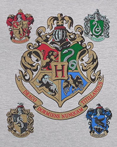 Hogwarts Harry Potter Women's Raglan Top
