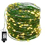 YULETIME Fairy String Lights with Adapter, 66Ft 200 LEDs Waterproof Starry Copper Wire Lights, Home Decor Firefly Lights for Garden Backyard Christmas Tree, Green Wire, Warm White
