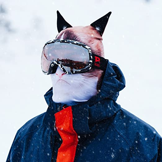 Cat Face Ski Mask