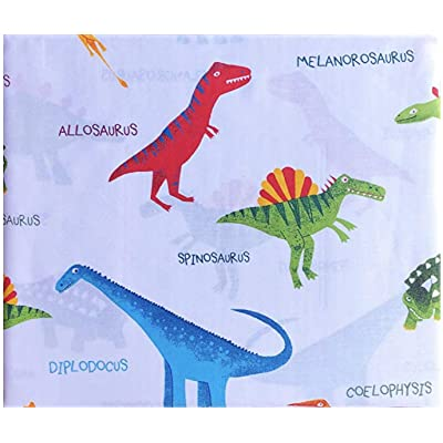 Boy Zone Sheet Set Colorful Dinosaurs with Names Red Green Blue on White Bedding (Twin): Home & Kitchen