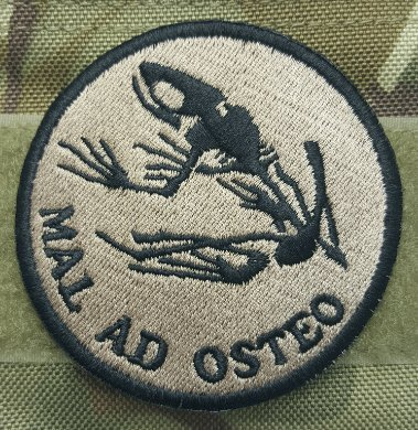 (MAL AD OSTEO US NAVY SEALS FROGMAN BAD TO THE BONE WARFARE VELCRO PATCH(MGX) (color2))