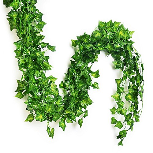 English Ivy Flowers - Eastern Fashional Life Splendid English Ivy Silk Greenery Wedding Party Garlands (75 feet-12 PCS)