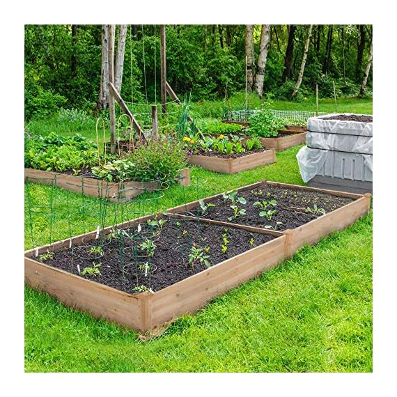 YAHEETECH Wood Raised Garden Bed Boxes Kit Elevated Flower Bed Planter Box for Vegetables Natural Wood 92.3 x 47.4 x 10… 6 BUILD YOUR DREAM GARDEN - This garden bed planter is separated into two growing area for different plants or planting methods. The baffle can be removed to create a bigger growing area if needed. You can get several garden beds to design and build your own dream garden. USEFUL & PRACTICAL - With this helpful planter, you can cultivate plants like vegetable, flowers, herbs in your patio, yard, garden and greenhouse, and make them more convenient to manage. SELECTED MATERIAL - Our raised garden bed is made of no paint, non-toxic fir wood. The boards are only sanded to prevent any undesired injury caused by wood splinters. 1.5cm/ 0.6'' thick solid wood boards are joined and fixed by screws, making it a durable piece for your long-term use.