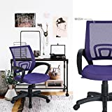 HOMY CASA Mid Back Mesh Ergonomic Computer Desk Office Swivel Chair Purple