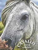 Il Cavallo 2018 Calendario (Edizione Italia) (Italian Edition)