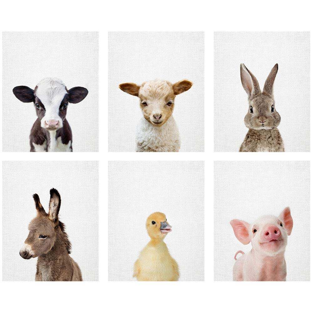 Amy Peterson Baby Farm Animal Portraits - Set of 6 Unframed Prints (8x10 Inch) by The Art Studio by Amy Peterson
