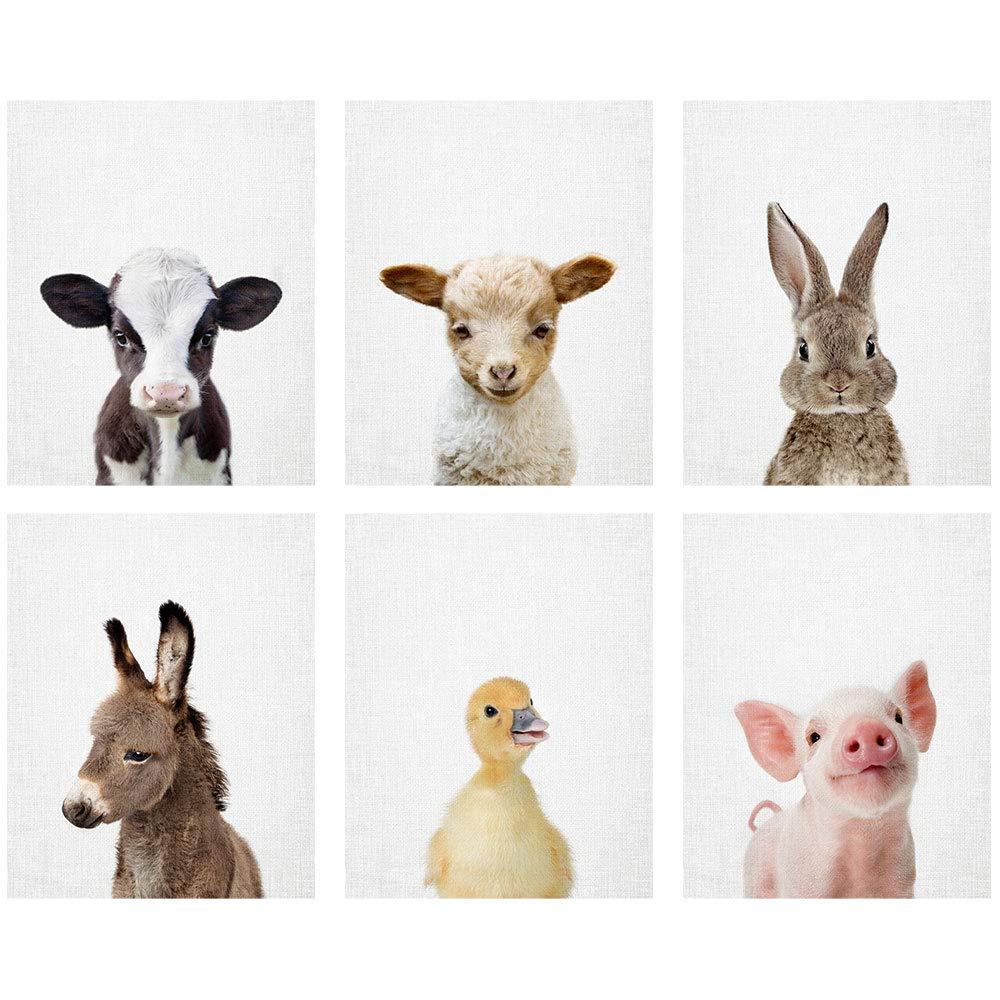Baby Farm Animal Prints 8x10 (tx) - Set of 6 Adorable Furry Baby Animal Portraits - Lamb, Cow, Donkey, Duckling, Bunny, Piglet - Nursery Animal Wall Art - Nursery Decor Unframed Prints