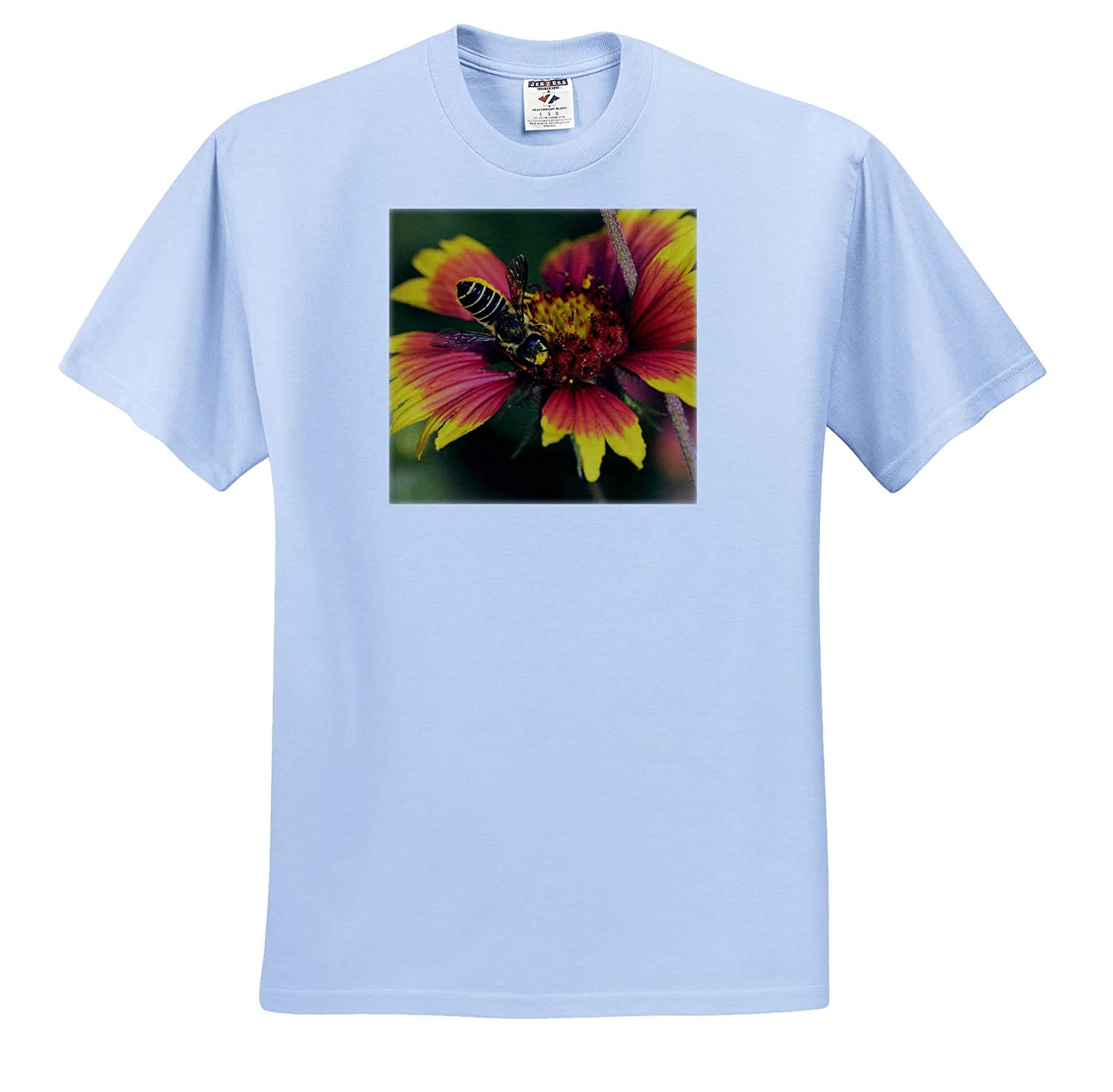 ts/_315048 Leafcutter bee Adult Feeding on Indian Blanket,Texas Adult T-Shirt XL 3dRose Danita Delimont Bees USA