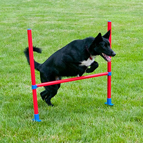 Lixit Jump Bar Dog Agility Starter Equipment by Lixit