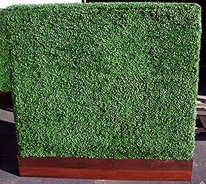 """colourtree 20""""x 20"""" sintética Artificial de boj cobertura paneles verde hojas Protector de–para valla, privacidad, interior y exterior Decoración de la pared, hacer tu propio Tamaño, resistente a los rayos UV, 3años de garantía"""