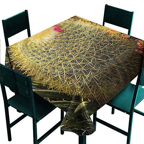 DONEECKL Square Tablecloth Cactus Cactus Plant with Spikes and Durable W54 xL54