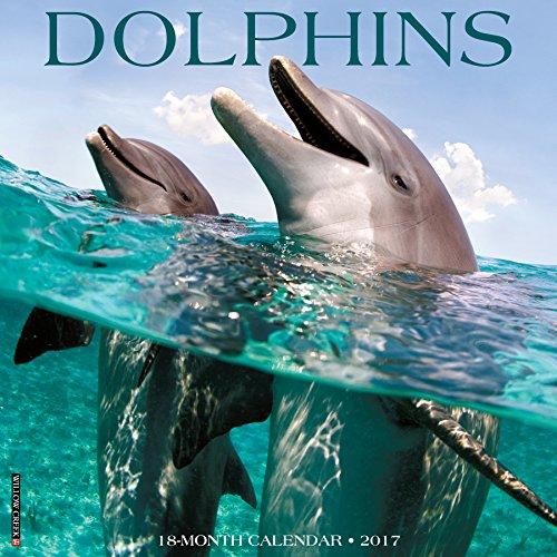 Dolphins 2017 Wall Calendar