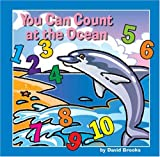 You Can Count at the Ocean, David Brooks, 1559719303