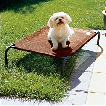 Amazon Big Dog Beds Outdoor Dog Bed Elevated Dog Bed With