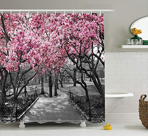 (Ambesonne NYC Decor Collection, Blossoms In Central Park Cherry Bloom Trees Forest Spring Springtime Landscape Picture, Polyester Fabric Bathroom Shower Curtain, 75 Inches Long, Pink Gray)