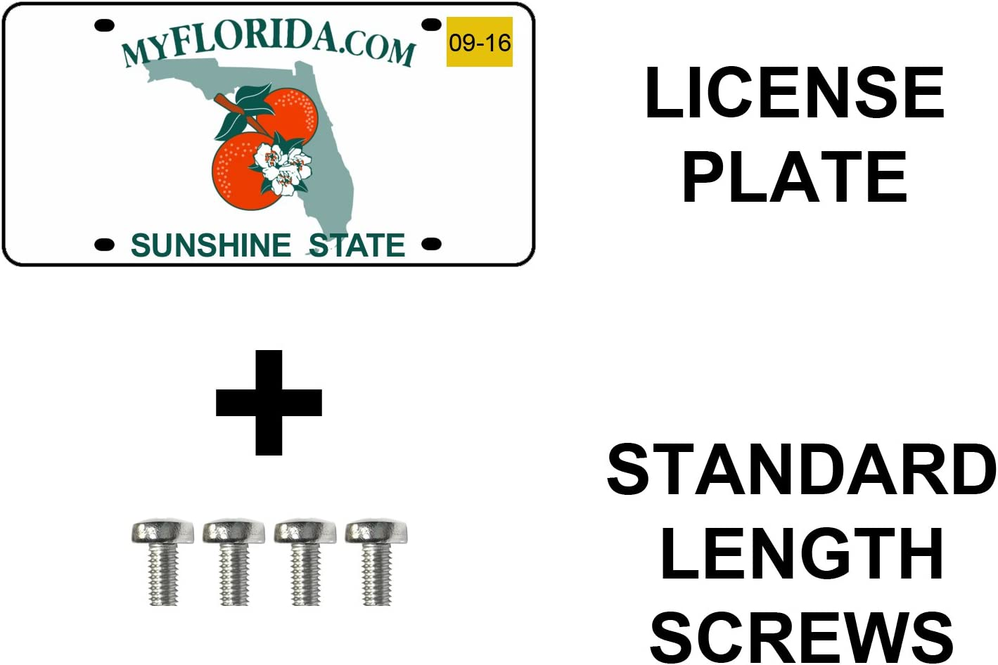 Extended Length Stainless Steel License Plate Screws ~ for All BMW Prime Ave Standard Pack of 8