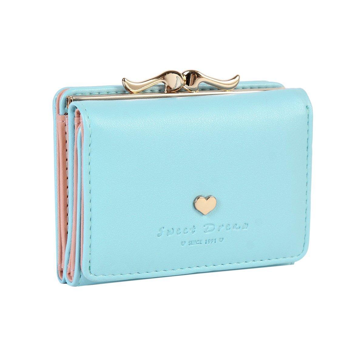 Damara Womens Metal Frame Kiss-lock Small Clutch Cards Holder Wallet,Light Blue