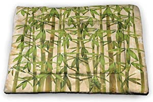 carmaxs Dog Mat Bamboo House Decor Collection Comfortable Soft Pet Cushion Bamboo Leaf and Birds on The Branch Pine Grass Family Artistic Illustration Yellow Brown Cream
