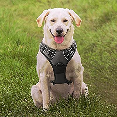 No Pull Dog Harness with Front Clip, Easy Walk Pet Harness with 2 Metal Ring and Handle,Reflective Oxford Padded Soft Vest For Small Medium Large Breed,Homein