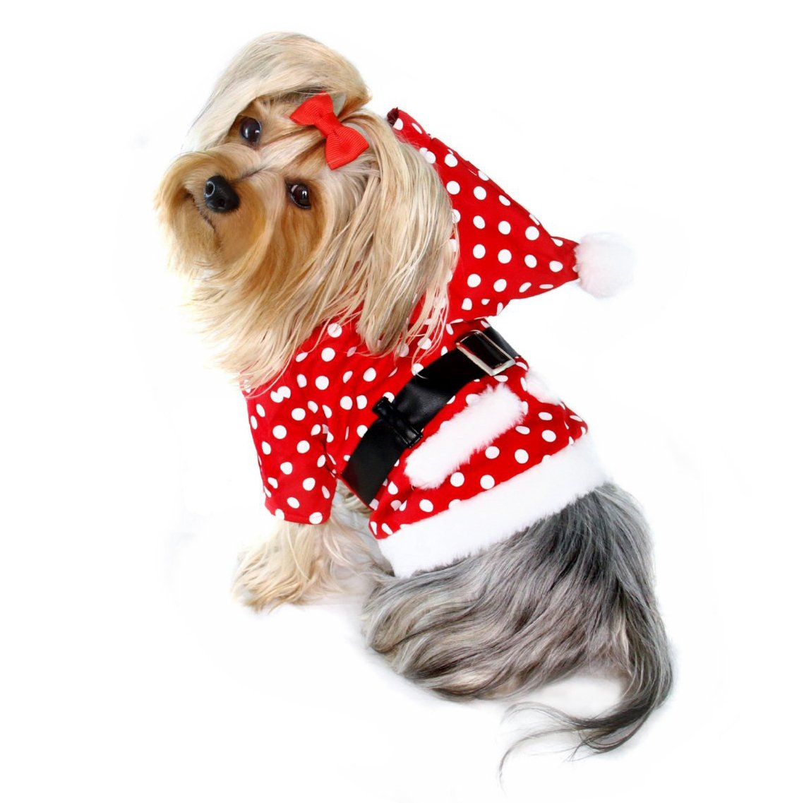 M Adorable and Warm Polka Dots Santa's Hoodie with Fleece Lining for Small Dogs M