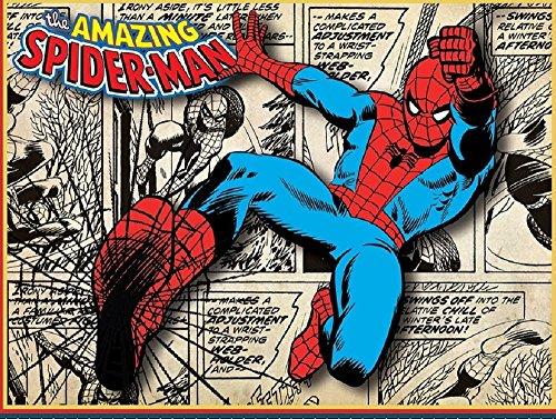 Marvel Comics Amazing Spiderman No Sew Fleece ()