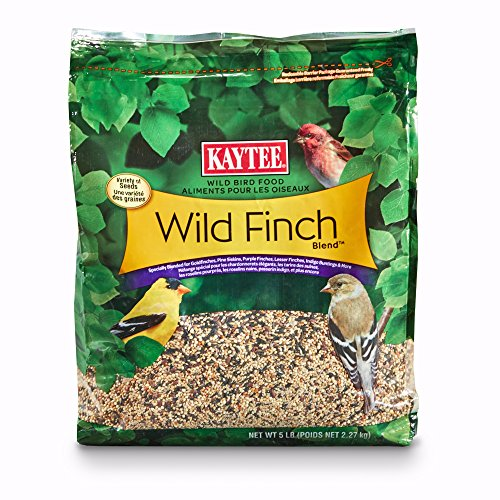 Kaytee Wild Finch Blend Stand Up Bird Food, (Plus Finch Food)