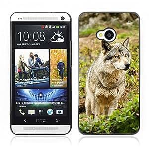 Carcasa Funda Case // V0000961 Wolf Animal Pattern // HTC ONE M7