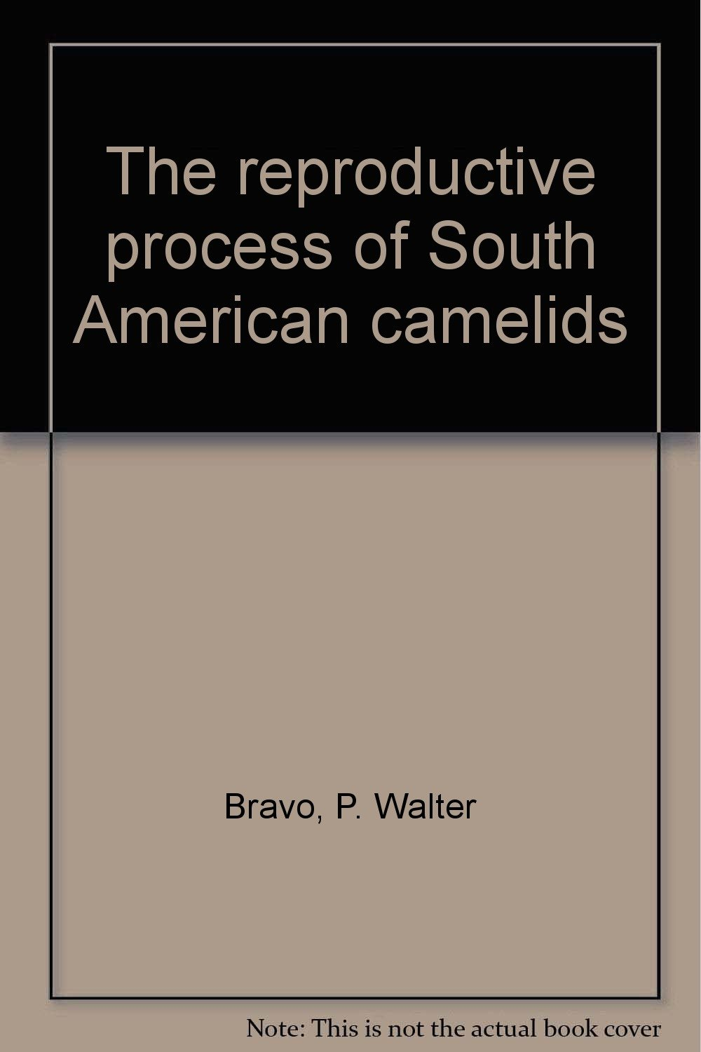 The reproductive process of South American camelids ebook