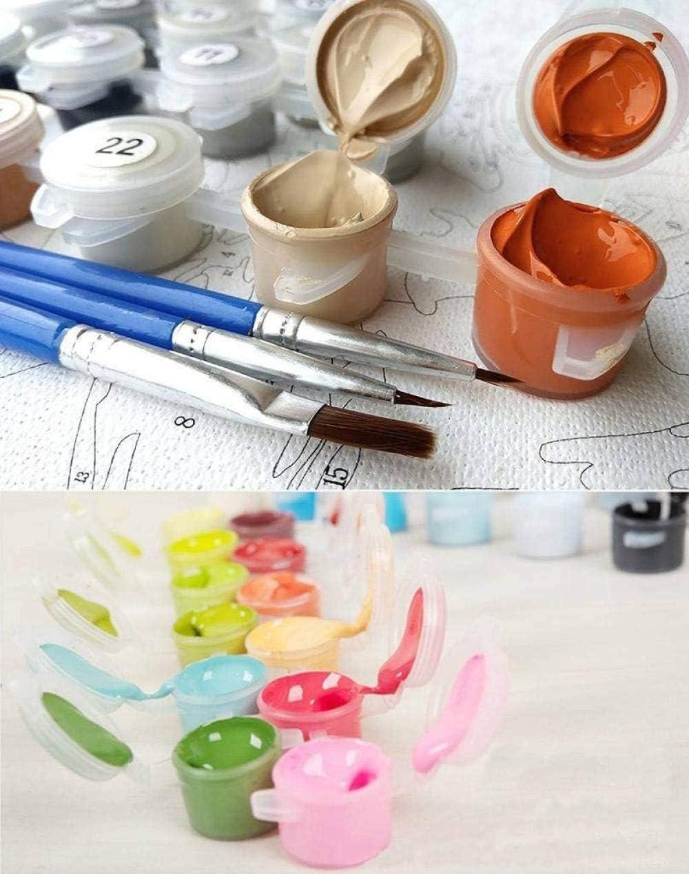 Iejsgfj Dipingere con i Numeri Aereo Pittura a Olio di DIY Dipingi per Il Kit di Numero Senza Telaio per Adulti Bambini Principianti Parete Decorazioni per la casa