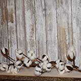 Cotton Boll Garland (2 Pack) - 5ft Each - White, Fluffy Cotton Bolls with Adjustable Stems for Farmhouse Decor