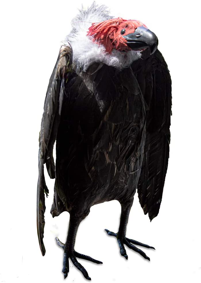 BirdBusters Dead Vulture Effigy 18 inch Tall, Deters Turkey & Black Vultures / Buzzards from Roofs, Trees and Cell Towers