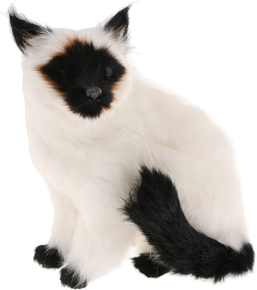 Animals of Real Life Seduta Siamese Cat Fenteer Vivid Arts