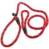 Pet Dog Nylon en boucle réglable Slip Training Leash Lead Rope Slip Dog Leash and Collar 1.2m Rouge