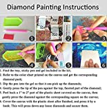 DIY 5D Diamond Painting by Number Kit, Full Round
