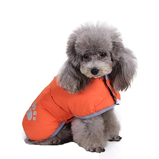 Amazon.com : BingYELH Reflective Dog Winter Jacket Velcro Reversible Puppy Warm Coat Pet Paw Print Parka Apparel Doggie Sweaters Pets Vest : Pet Supplies
