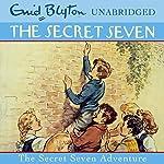 Secret Seven Adventure: The Secret Seven, Book 2 | Enid Blyton