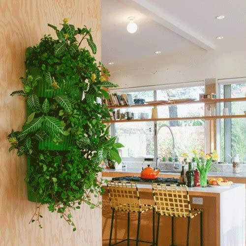 Living de pared macetero, jardín Vertical, uso en interiores/al aire libre por lana bolsillo: Amazon.es: Jardín