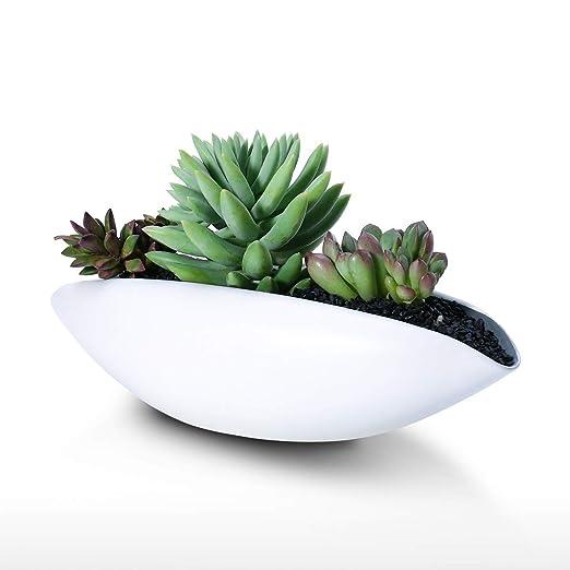 Maceta de cerámica blanca - Jarrón suculento, centro de mesa ...