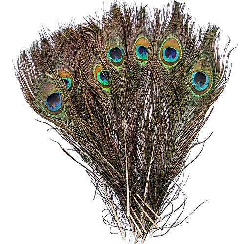 wanjin Bleached Dyeing Peacock Feathers 10-12 inch /25-30cm for DIY Craft Wedding Decoration per Pack of 20 (Natural Color) ()