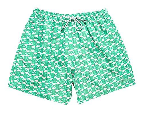 UZZI Dry Fast Microfiber Swim Shorts with Lining Flamingo Design (M, Aqua)