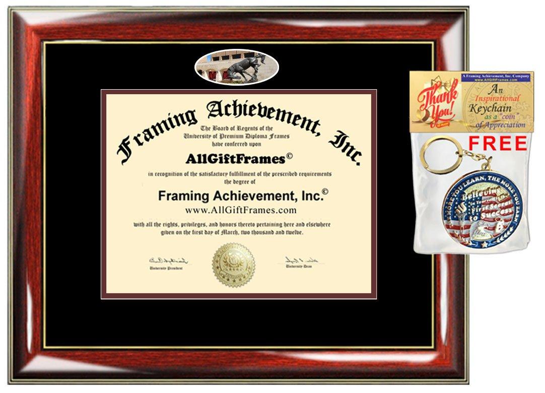 Amazon.com : University of Texas Pan American Diploma Frame UTRGV ...
