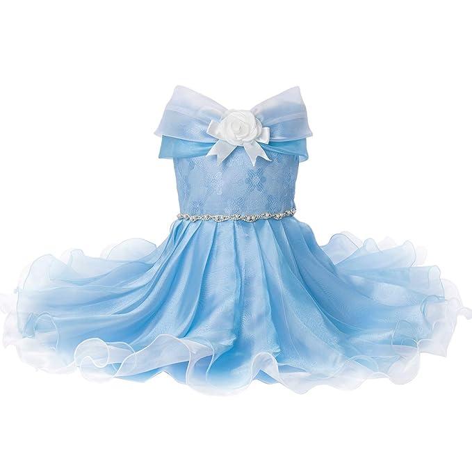 Amazon.com: Disfraz de princesa para niñas de primera ...