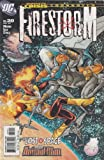 Firestorm Number 20 (Lost in Space with Animal Man)