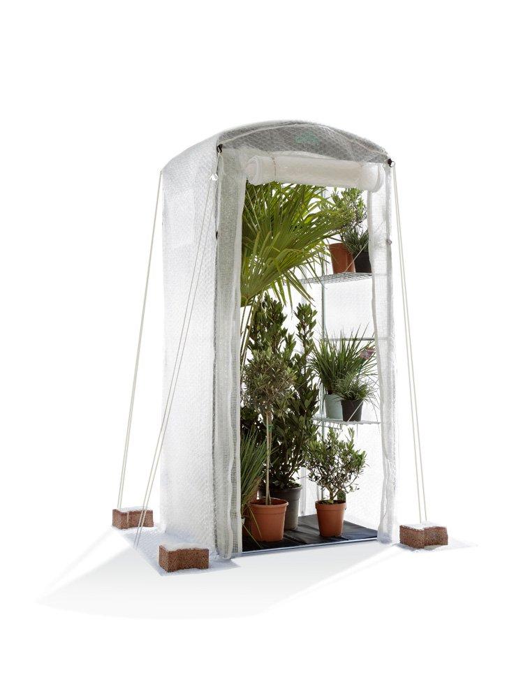 Bio Green PTF 100 Patioflora Tomatenhaus 220 x 100 x 80 cm für Terasse und Garten, 4 Jahreszeiten