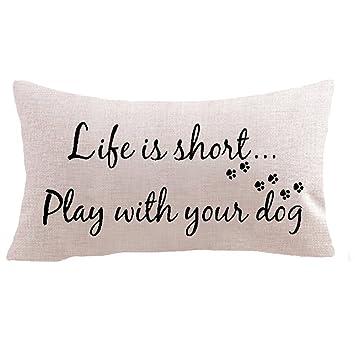 Amazon.com: Familia mascota perro paw Paw gato Sit en el ...