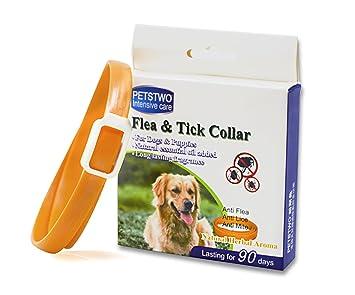 Collar de pulgas y garrapatas para todo tipo de perros y gatos natural del aceite esencial 1-Pack: Amazon.es: Productos para mascotas
