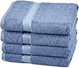 Pinzon Egyptian Cotton Bath Towel Set (4 Pack) - Wedgewood