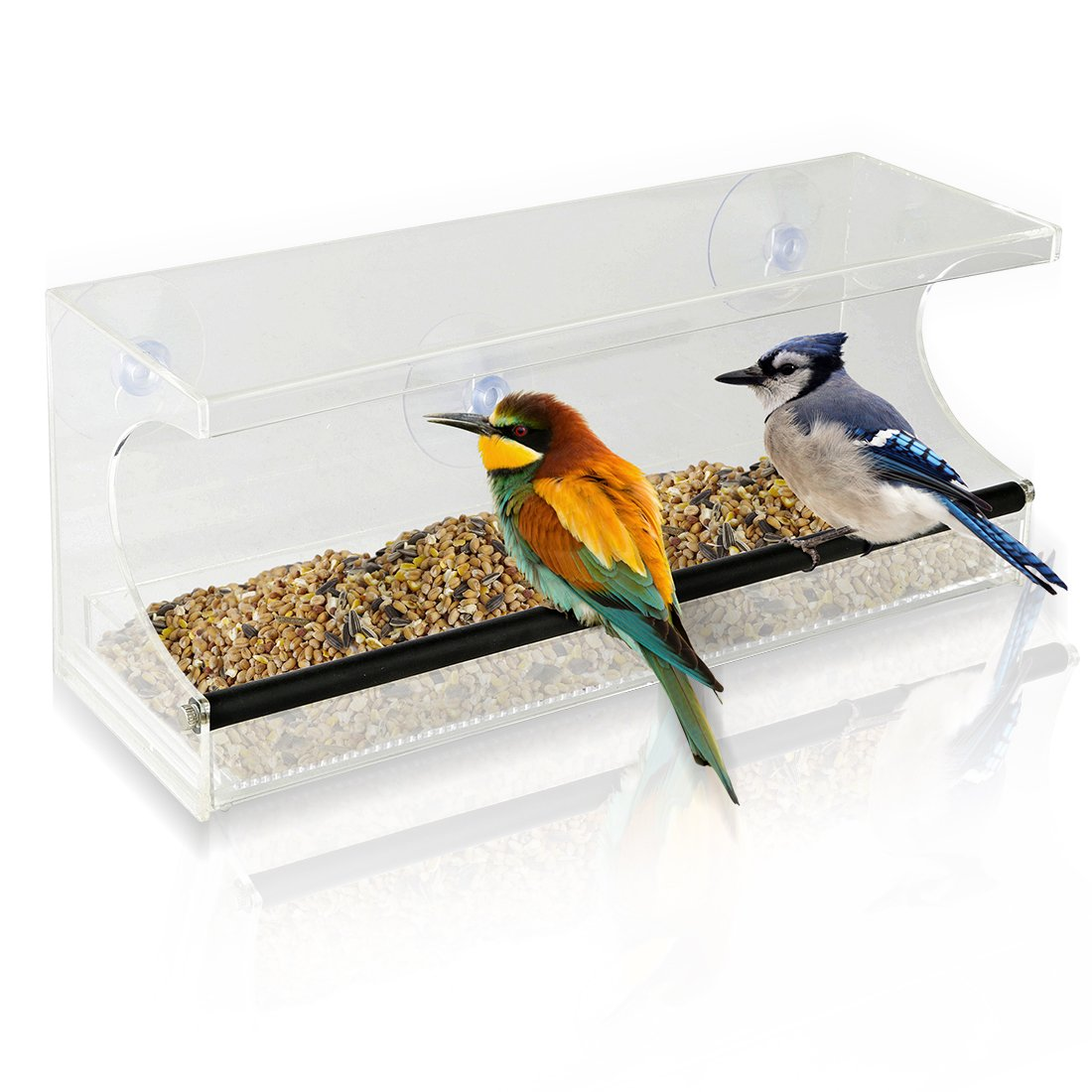 Window Bird Feeder   See Through Acrylic   Clear, Removable Slide Out Tray    Drainage Holes Keep Bird Seed Fresh   3 Suction Cups For Easy Mounting ...