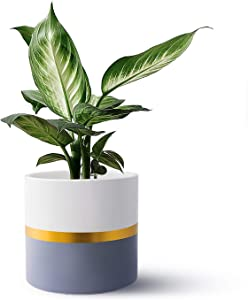 FairyLavie Plant Pot, 6.5'' Ceramic Planter with Drainage Hole and Plastic Stopper, Perfect for Indoor Flower Plants, Great for Home Decor and Ideal Gift