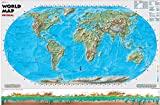 Cool Owl Maps World Physical Wall Map Robinson Projection Education - Rolled Paper (36''x24'')